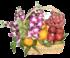 Fruit basket 004