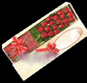 roses in box 001
